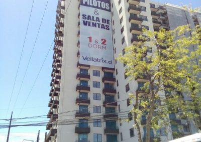 Dpimpress - Malla Mesh Vellatrix Concepción